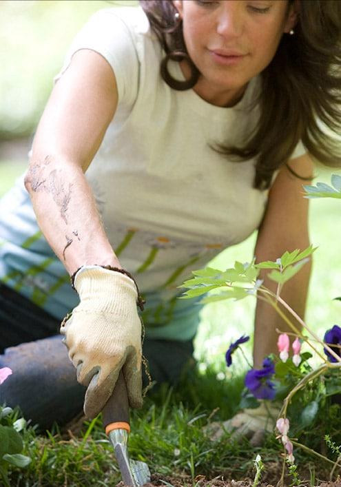 grid-jardinage